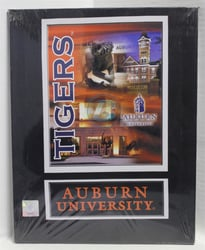 "Auburn University (1) Canvas 11"" x 14"" Wall Hanging collectible canvas, ncaa licensed, officially licensed, collegiate collectible, university of"